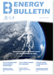 №12, 2011 Renewable Energy in the Global Context: the role of building capacities