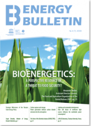 №7, 2009 Bioenergetics: a perspective resource or a threat to food security?